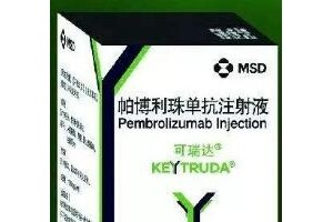 【医诺全球】PD-1/PD-L1免疫治疗系列Keytruda肺癌I篇